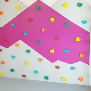 Climbing Wall with Monkey Bars, Climbing Ladder & Roper Ladder