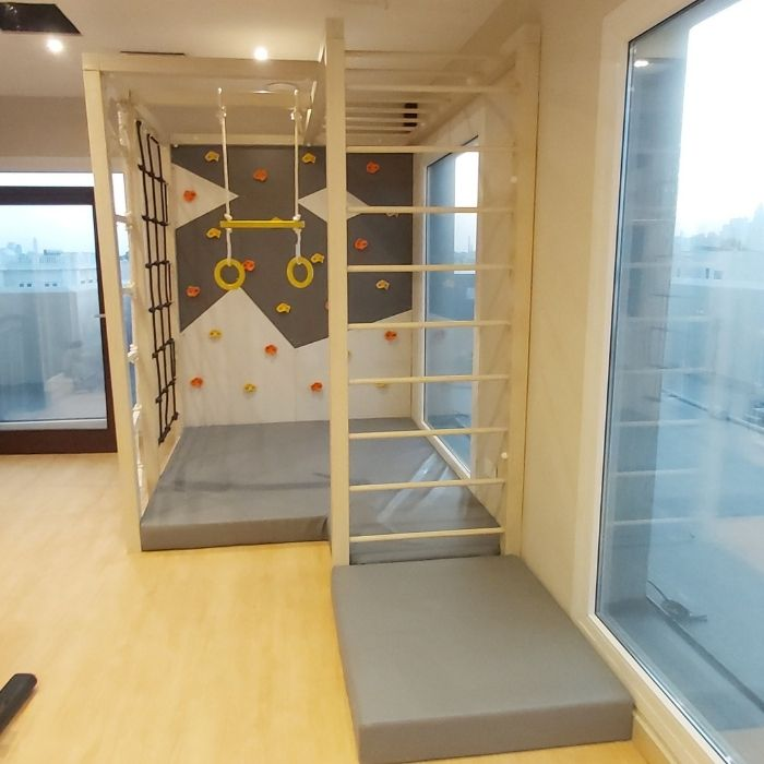 Climbing Wall with Rope Climber, Ladder and Rings