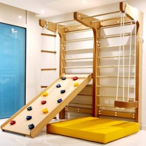Swedish Wall with Climbing Ramp, Swing & Rope Ladder