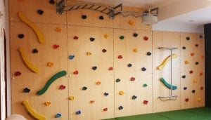 Climbing Wall with Monkey Bar & Fireman Pole