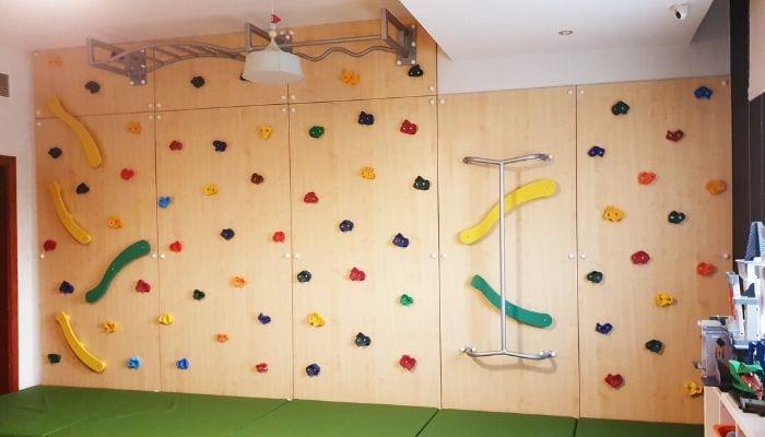 Climbing Wall with Monkey Bar & Fireman Pole