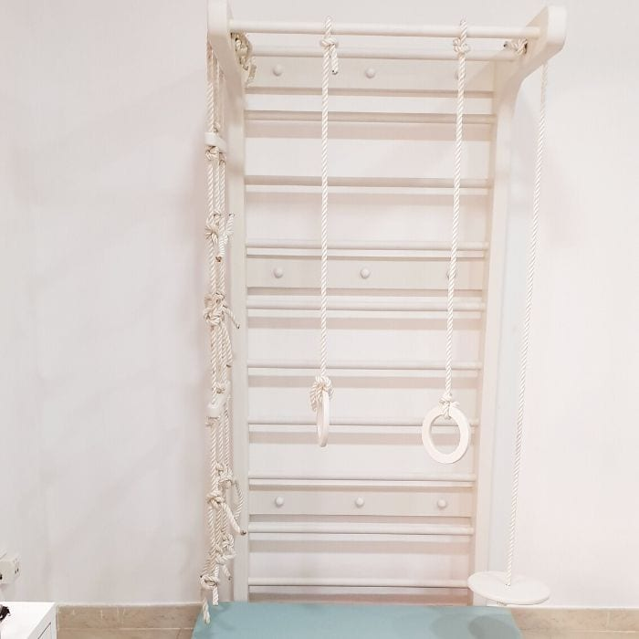 Swedish Wall with Rope Ladder, Gymnastics Rings & Standing Plate Swing