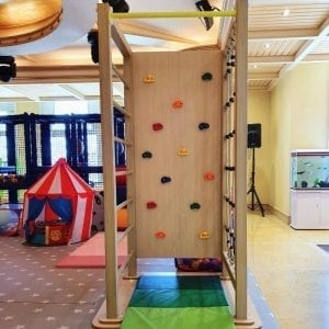 Free Standing Multi Climb Tower