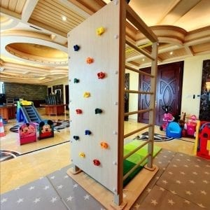 Free Standing Multi Climb Tower