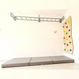 Rock Face Climbing Wall with Monkey Bars