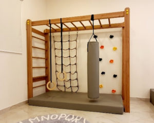 Monkey Bars Product Category