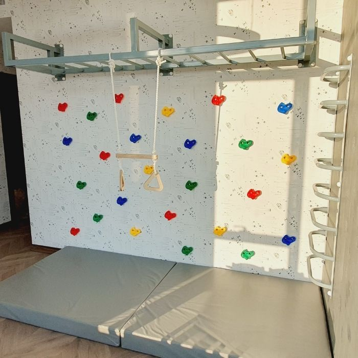 Monkey Bars with Climbing Grips and Ladder