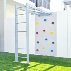 Climbing Wall with Monkey Bars - Metal