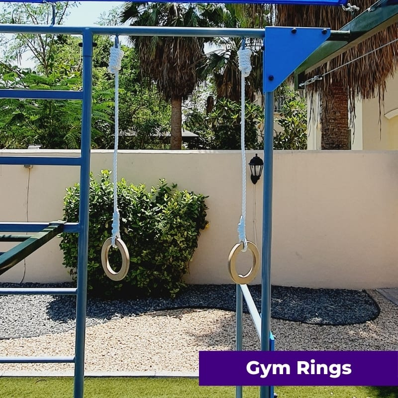Add On Gym Rings