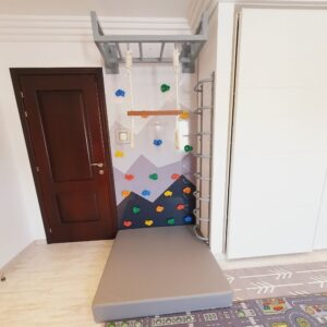 Climbing Wall Panel with Mountain Graphic, Ladder & Monkey Bar - Type 2