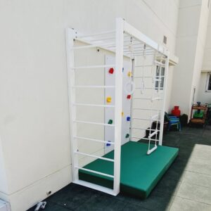 Outdoor Monkey Bar with accessories set
